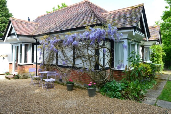 Pinewood Cottage New Forest